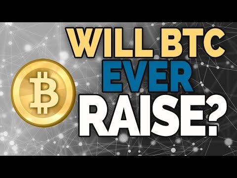 Will BTC Bull Run Soon?