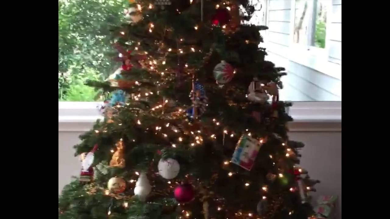 Merry Christmas From Pinky! - YouTube