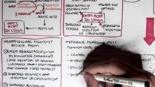 Medicine (Field Of Study)