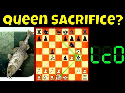 Queen Sacrifice ang Tema? || Stockfish vs. LC0 || Chess.com