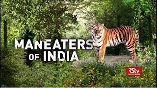 In Depth - Maneaters of India
