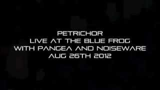 42 - Petrichor - Live at the Blue Frog