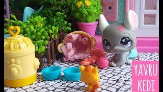 Minişler Yavru Kedi 🐾🐈| LPSEM miniş videoları izle - Littlest Pet Shop masalları