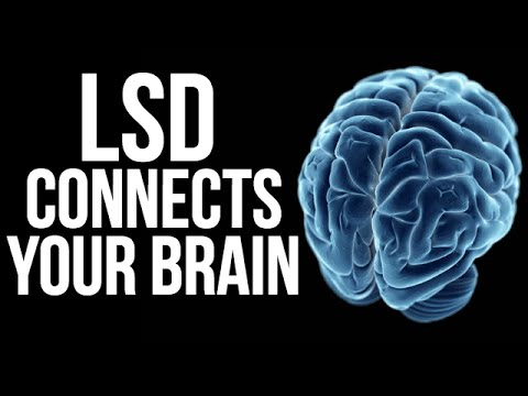 LSD CONNECTS YOUR BRAIN -  Professor David Nutt on London Real