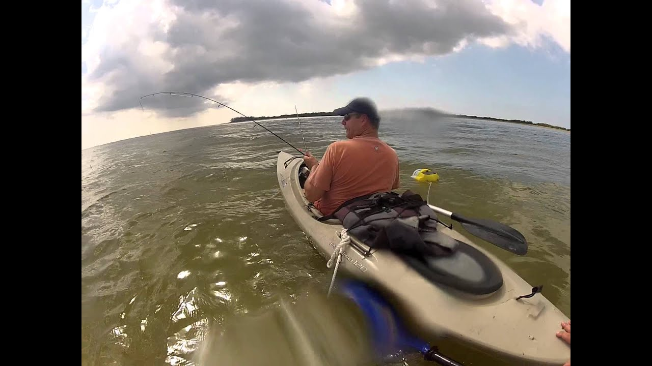 Shark fishing from kayak at ft desoto youtube for Florida fishing license lookup