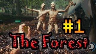 Прохождение The Forest #1 [Выживание среди людоедов!]