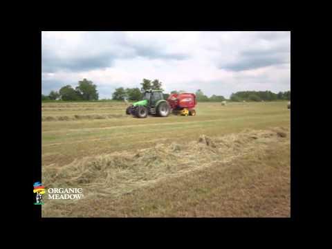 DeJong Baling Hay Organic Meadow Co-op member DeJong Family