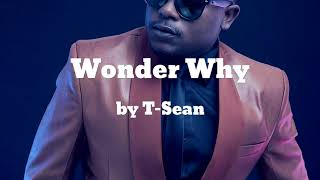 Wonder Why ft B1 - T-Sean