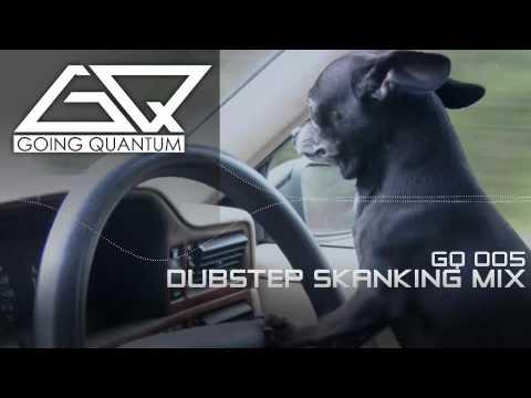 Dubstep Skanking Mix ★ January 2011