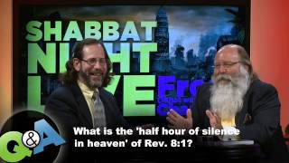 what is the half hour of silence in heaven of revelation 81?