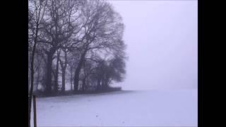 Claude Debussy - Preludes Book 1, No. 6, Des pas sur la neige (Footsteps in the Snow)