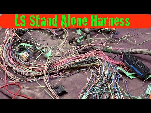 Ls Stand Alone Wiring Harness Would you Tackle This