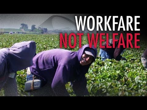 Blame welfare state for Canada's reliance on migrant workers