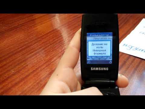 Телефон Samsung SGH-X160. Серия 3. Деление на ноль. Неверная формула.