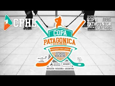 Copa Patagónica - Hockey en Línea