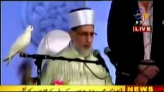 Mumbai, India (Bombay) and Miracle of Dove at Lecture of Dr.Muhammad Tahir-ul-Qadri