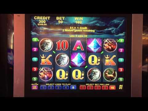 Dollar Bear Bonus Round at $50/pull on the Dollar Bear Slot Machine