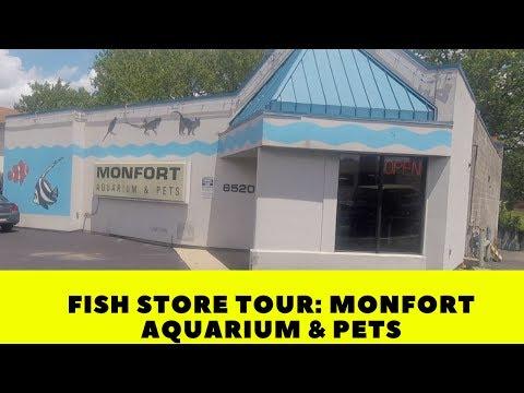 Fish Store Tour: Monfort Aquarium & Pets