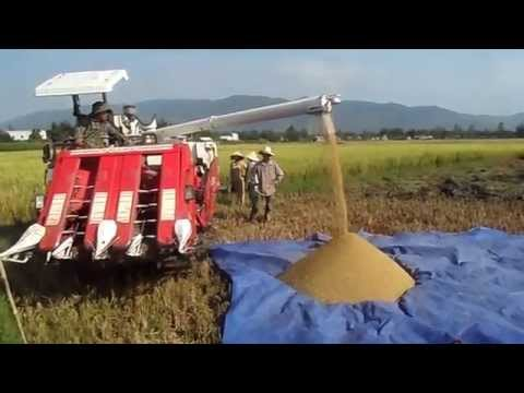 May Gat YanMar - May Gat KUBOTA 2012.MP4