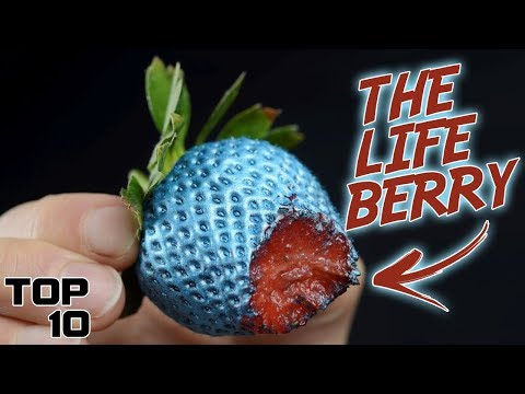 Top 10 Foods That Will Make You Immortal
