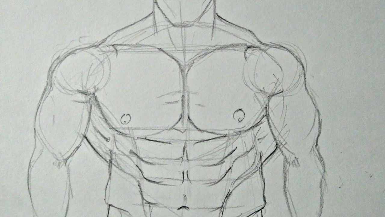 How To Draw Muscular Male Body