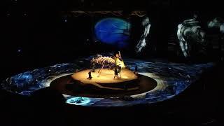«Toruk - The First Flight», «Cirque du Soleil»