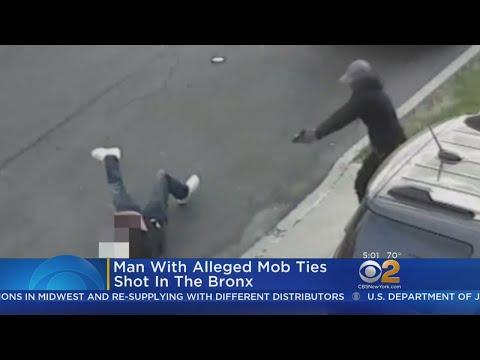 Man Shot In The Bronx