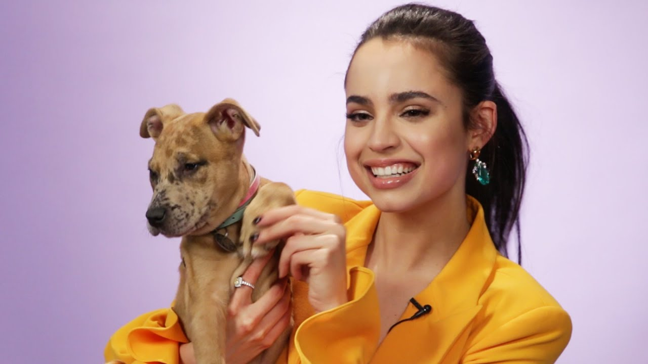 Download Sofia Carson Plays With Puppies While Answering Fan Questions