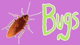 Bad Bugs - Insect Pests for Kids