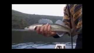 Bistro BiH NTV Hayat - Jezero Bočac, lov smudja II dio