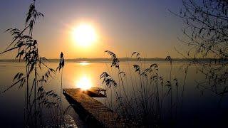 Beautiful Music - Надежда