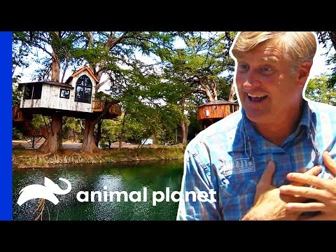 Pete Is Mesmerized By These Four French-Themed Treehouses | Treehouse Masters