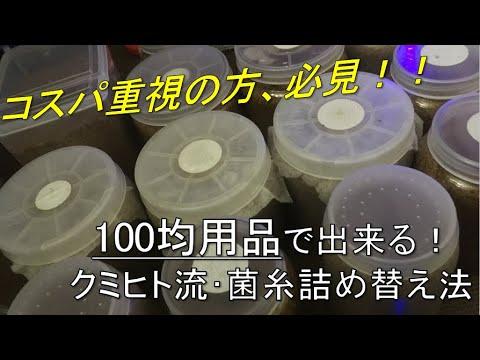 コスパ重視の方、必見! クミヒト流・100均道具菌糸詰め替え法