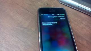 Прикол с SIRI на Iphone 5s | SofiHase