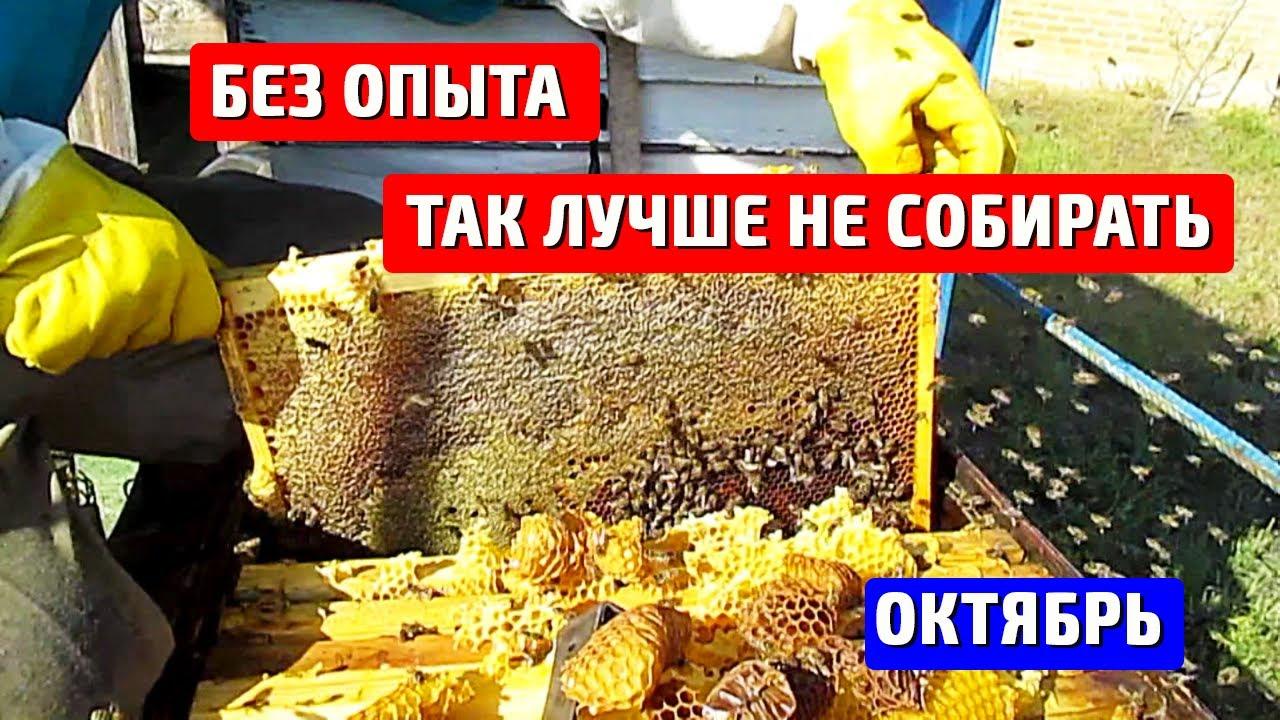 пчеловодство сборка гнезда в зиму видео