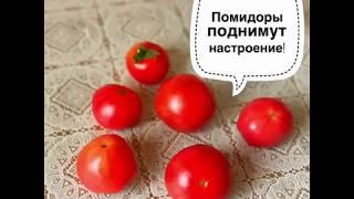 Польза помидор или томаты вместо шоколада