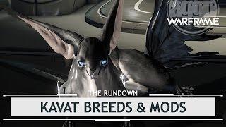 Warframe: Adarza, Smeeta, & Kavat Mods [therundown]