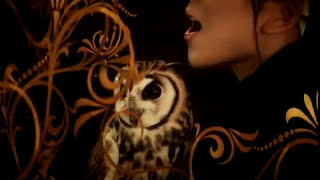 MISIA - Royal Chocolate Flush