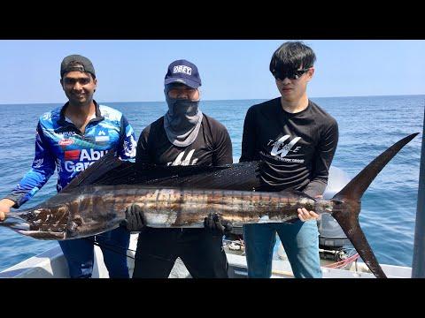 Sailfish Fishing 2 (Kuala Rompin Pahang)