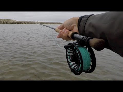 Echo Bravo Fly Reel For Saltwater