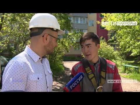 Владивостокские арбористы рассказали об особенностях своей редкой и опасной профессии