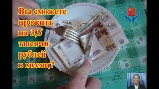 Вы сможете прожить на 3,5 тысячи рублей в месяц?