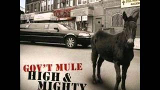 Gov't Mule - Million Miles From Yesterday.wmv