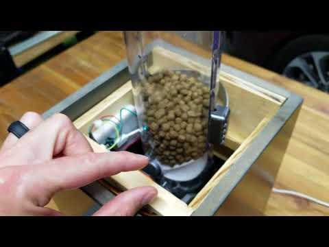 DIY IoT Cat Feeder - Particle Photon, Alexa, SmartThings, IFTTT