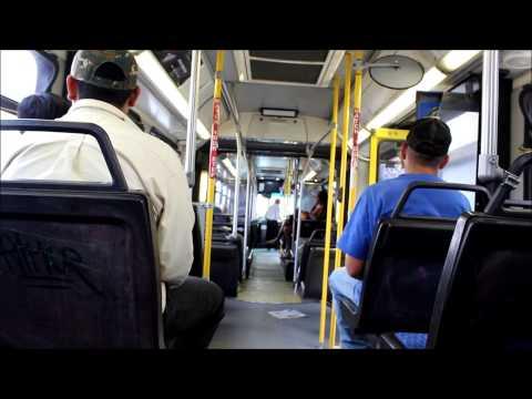 Edmonton Transit System: On Board 2001 New Flyer D60LF #4900 (Route 9)(HD)