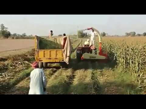 Fodder cutter cum chopper