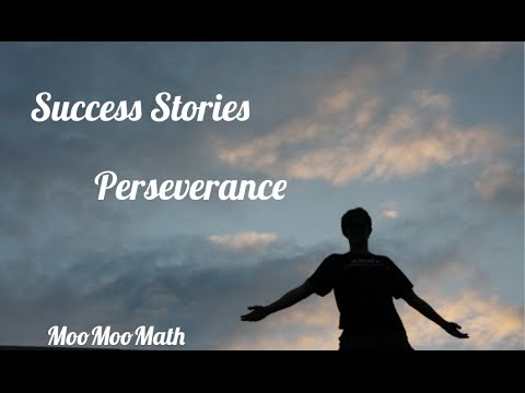 perseverance and success