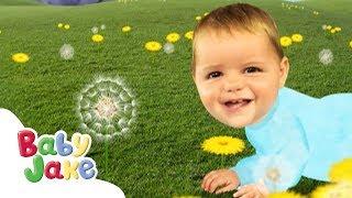 Baby Jake - Lovely Sunflowers!   Full Episodes   Yaki Yaki Yogi   Cartoons for Kids