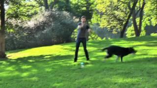 Ben Aaron Celebrates National Dog Day...With OTIS!