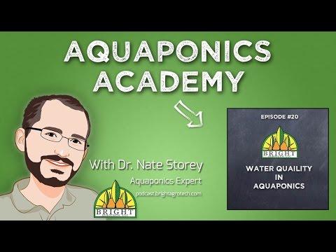 Aquaponics Academy #20: Water Quality